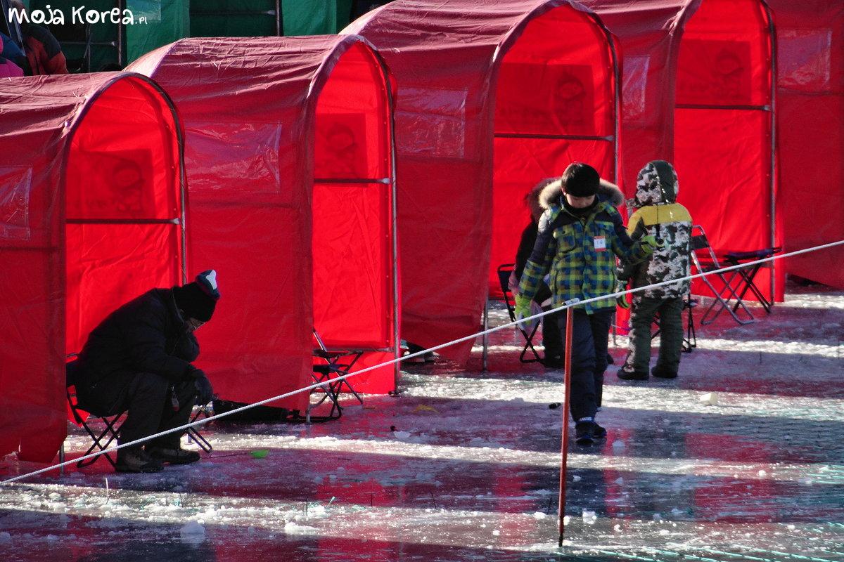 Jinbu Festiwal Zimowy Viator Polonicus