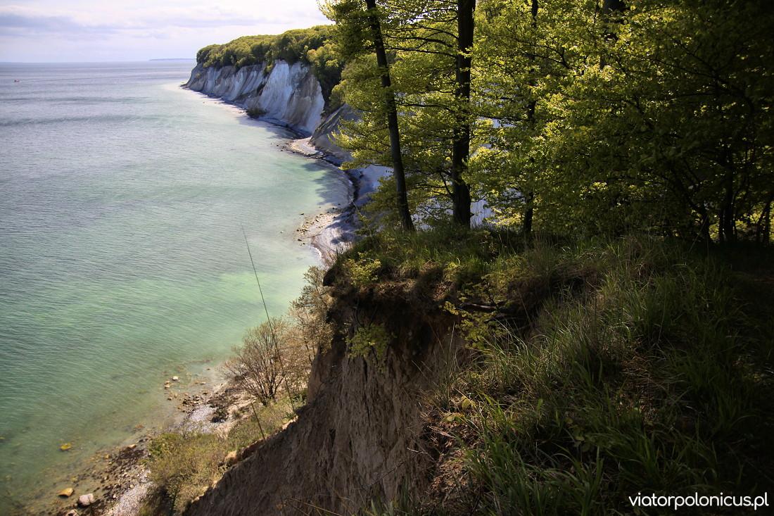 Meklemburgia Pomorze Przednie Viator Polonicus